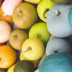 DIY Rainbow Pumpkins.png